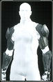 Inquisitor Arms.png